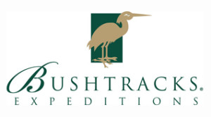 www.bushtracks.com